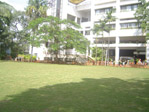Front lawns
